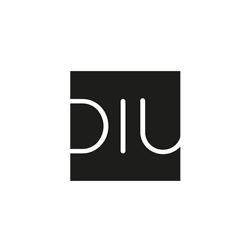 logo_diu.jpg